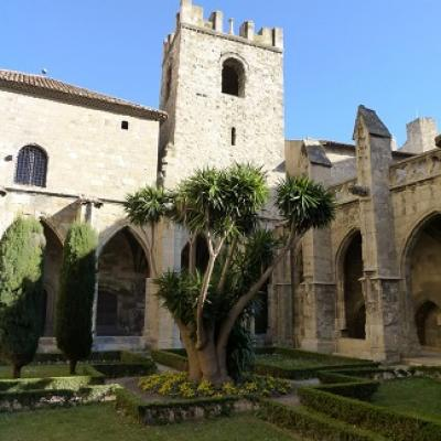 Discover Narbonne's history with your French culture course