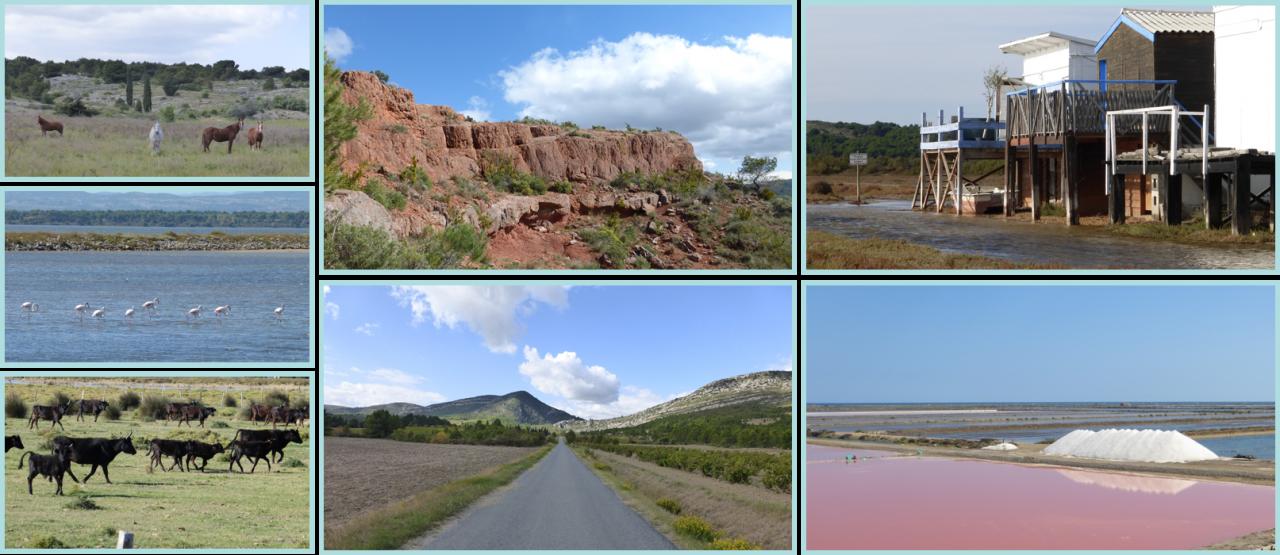 Séjour linguistique dans les paysages sauvages du Languedoc