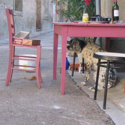 Vivre la douceur de vivre en France et apprendre le français