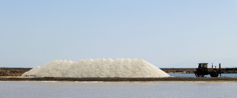 The salt harvest in Gruissan