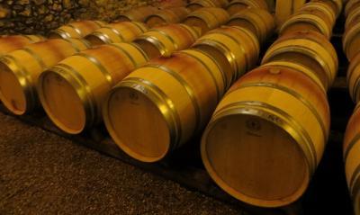 Cours de français et terroir: le vin