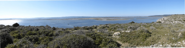 The Antic gulf in Narbonne's Natural Park