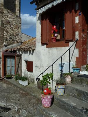 Cours de français, culture et visites