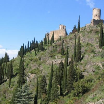 French tuition in languedoc cathar