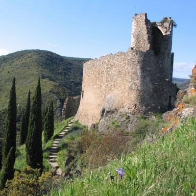 French and culture course in nature in Carcassonne