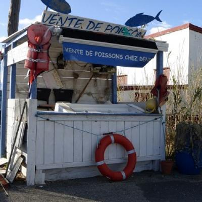 Discover South of France fishermen village with your French teacher