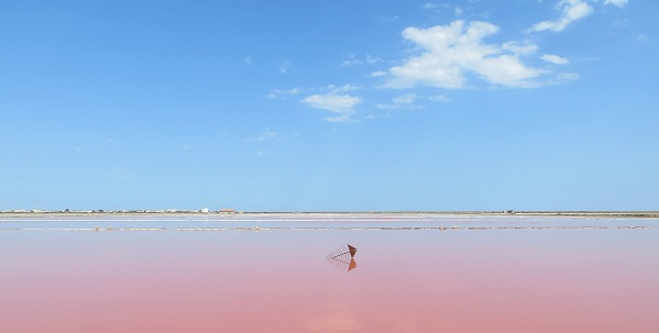 The pink saline of the Mediterranean Sea