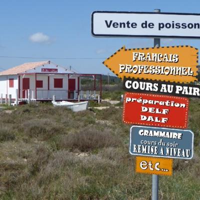 Cours de français sur mesure pour professionnels et étudiants